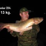 Šumbar - 13 kg - amur